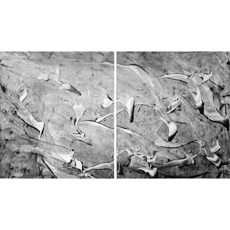 La houlée des oiseaux - LOUIS-ROGER